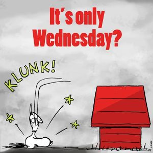 It's Only Wednesday, Clunk